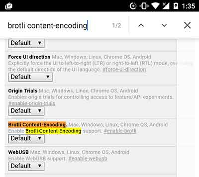 Google Chrome Tips and Tricks - Brotli