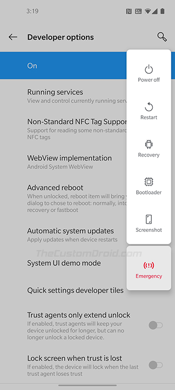 Enter Fastboot and Recovery Modes on OnePlus 8 (Pro) using Advanced Reboot menu